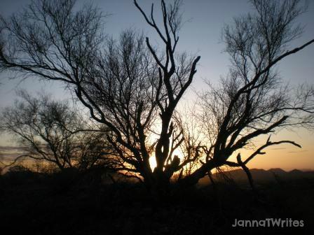 Sunrise:  Sheds light on the promise of change