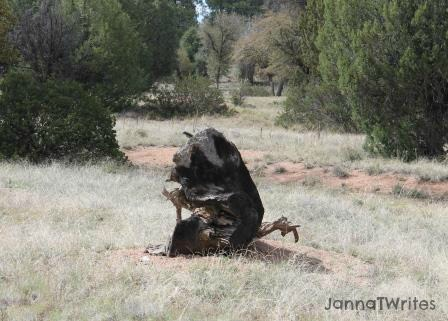 05-22 Tree Stump Animal2