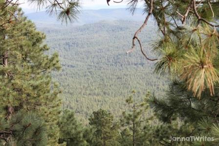 View from vista on Mogollon Rim