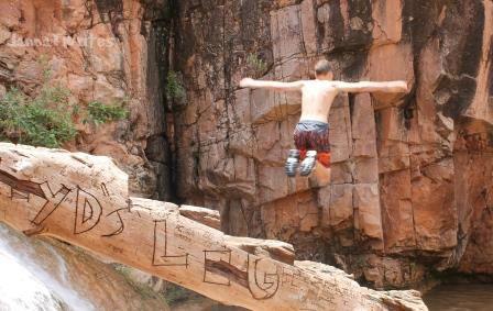 8-31 Leap